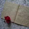 diary2.jpg