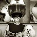 hairdresser_1.jpg